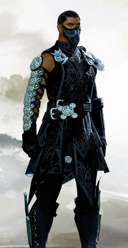 Guild wars 2 sexy thief armor